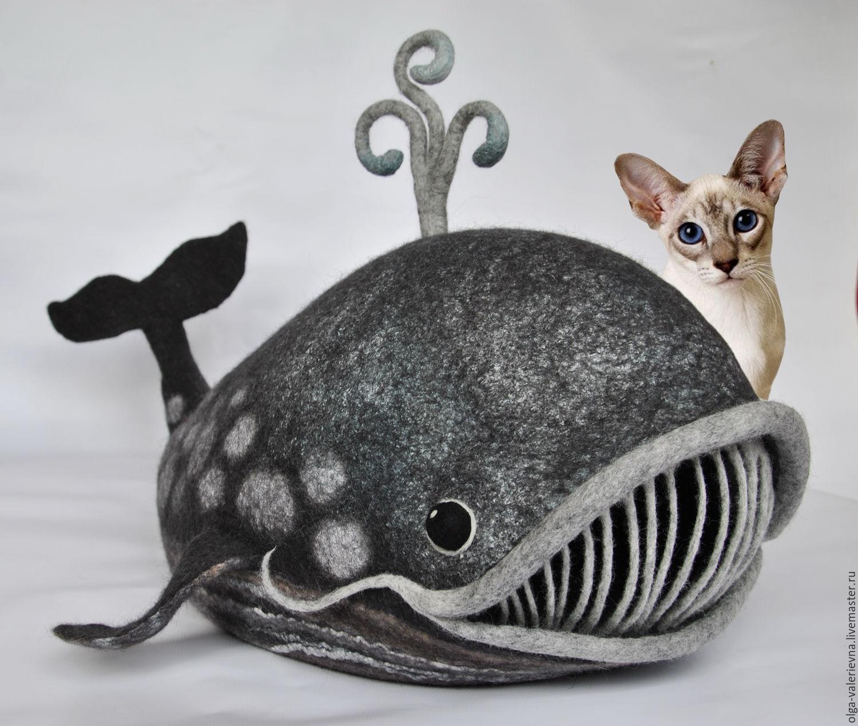 Купить животное кота