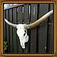 Экстерьер и дача ручной работы. Ярмарка Мастеров - ручная работа. Купить Череп быка с огромными рогами. Handmade. Белый, запад
