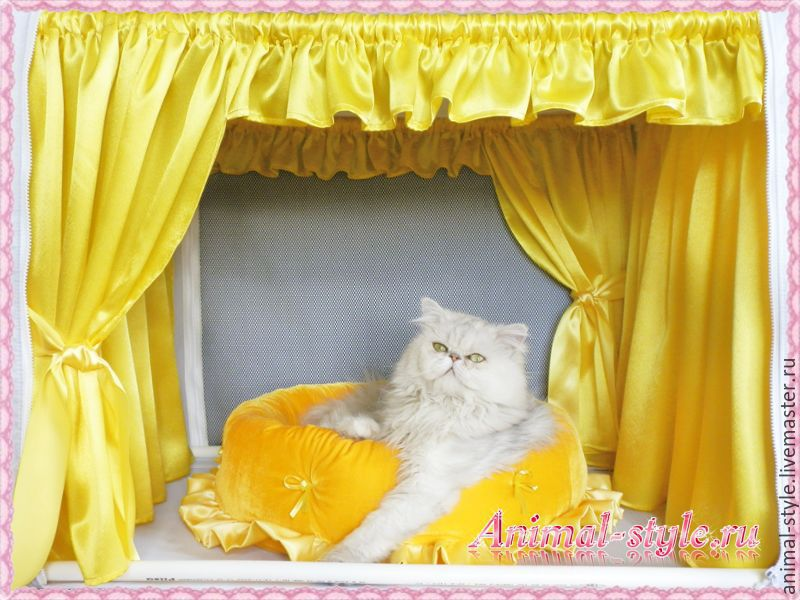 `Solar` the Design of exhibition tents for cats