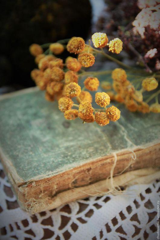 Мишки Тедди ручной работы. Ярмарка Мастеров - ручная работа. Купить Мятные мечты с земляничным счастьем  или...... Handmade. Черный