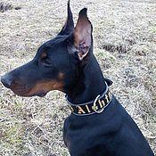 Для домашних животных, handmade. Livemaster - original item Collar for dogs made of genuine leather, personalized dog collar. Handmade.