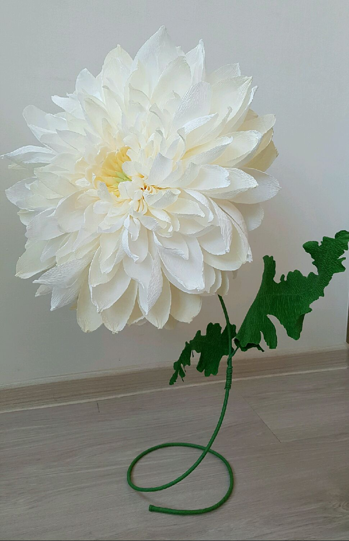 Цветы из гофрированной бумаги своими руками - Мир Позитива