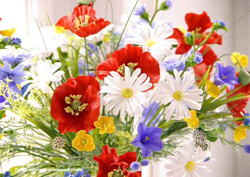 фото летних цветов: