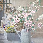 Картины и панно handmade. Livemaster - original item Photo pictures flowers spring pink flowers Spring in Paris pastel. Handmade.