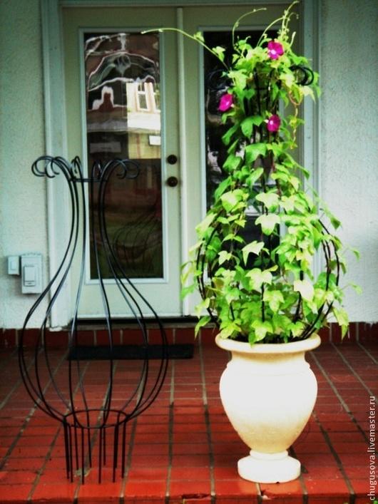 Цветы дома подставки