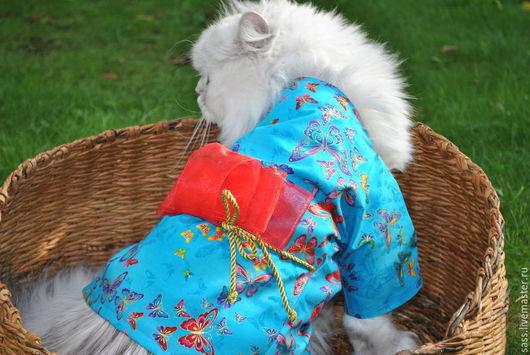 Одежда для кошек, ручной работы. Ярмарка Мастеров - ручная работа. Купить Кимоно для кошек. Handmade. Бирюзовый, одежда, халат, handmade