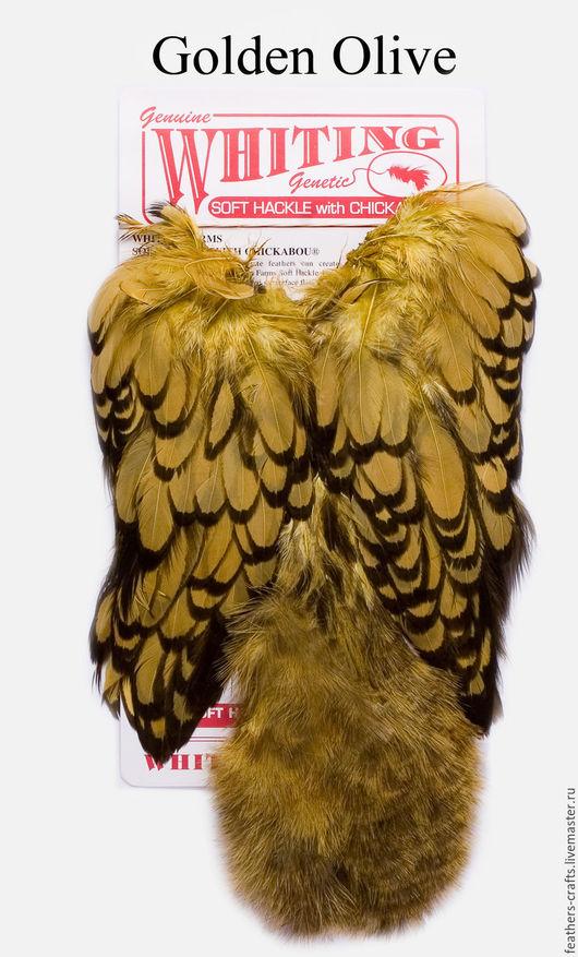 Другие виды рукоделия ручной работы. Ярмарка Мастеров - ручная работа. Купить Перья American Hen SH/C BLW/Golden Olive (42803365). Handmade.