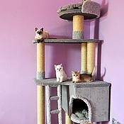 """Для домашних животных, ручной работы. Ярмарка Мастеров - ручная работа Комплекс для кошек  """"Успех"""" (подходит крупным кошкам). Handmade."""