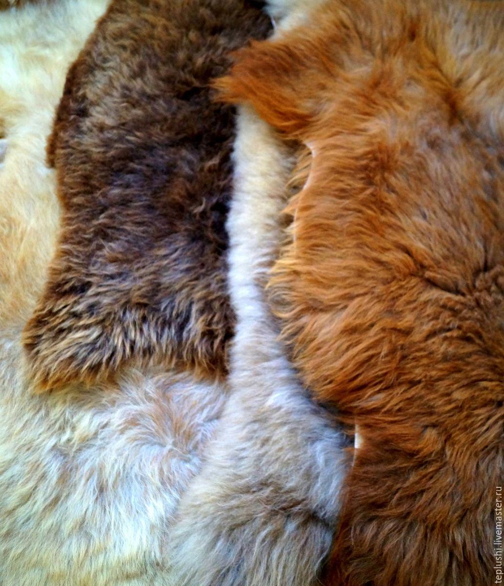 Шкура овечья, Ковры, Нальчик,  Фото №1