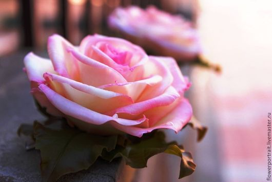 Заколки ручной работы. Ярмарка Мастеров - ручная работа. Купить Зажимы с розой. Handmade. Роза, цветы из полимерной глины