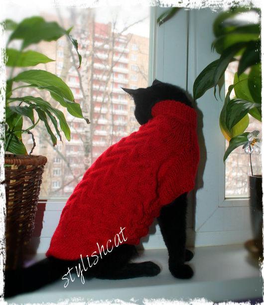 Одежда для кошек, ручной работы. Ярмарка Мастеров - ручная работа. Купить Свитер для кошек.Одежда для кошек. Handmade. Ярко-красный