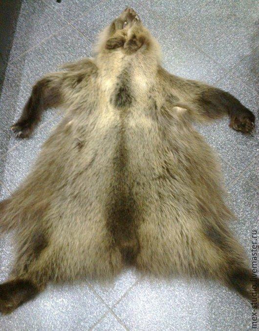 Шитье ручной работы. Ярмарка Мастеров - ручная работа. Купить Шкура молодого медведя. Handmade. Шкура медведя, Медвежья шкура