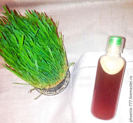Фото: Шампунь для роста волос Эхинацея (1500Х1382)