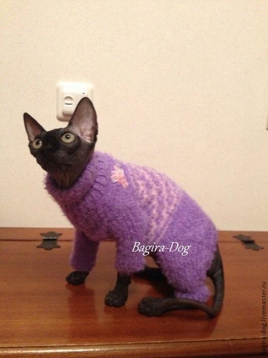 Одежда для кошек, ручной работы. Ярмарка Мастеров - ручная работа. Купить Комбинезоны для кошек и котов. Handmade. Фиолетовый, донской сфинкс