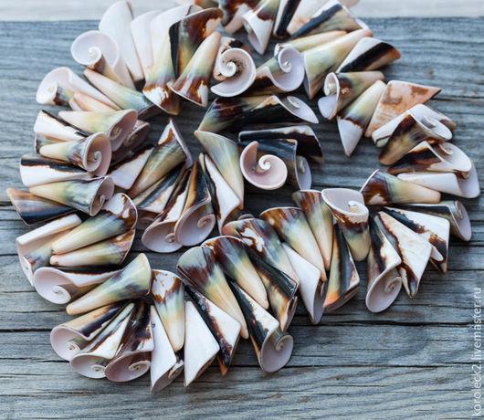 Для украшений ручной работы. Ярмарка Мастеров - ручная работа. Купить Бусины из раковин моллюска Lisway. Handmade. Бусины