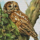owl - a symbol of knowledge, reputation, wisdom, protects against inefficient investment.
