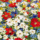 Oil painting of Daisies with poppies. Pictures. Zabaikalie. Online shopping on My Livemaster.  Фото №2