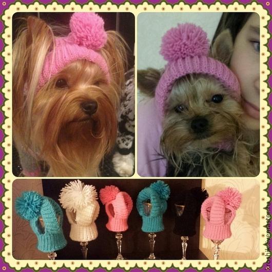 Одежда для собак, ручной работы. Ярмарка Мастеров - ручная работа. Купить Вязаная шапочка-капор для собак. Handmade. Шапочка для собак