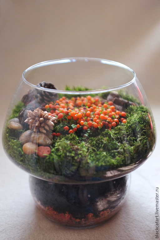 Подарок Лешего, миниатюрный сад за стеклом.