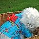 Одежда для кошек, ручной работы. Кимоно для кошек. Marisha Sass (sass). Интернет-магазин Ярмарка Мастеров. Одежда для кошек, кимоно