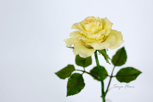 Цветы ручной работы. Ярмарка Мастеров - ручная работа. Купить розы. Handmade. Розы, основа для роз