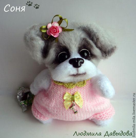 Людмила Давыдова, собачка, собака, собака тедди, собачка тедди, мягкая игрушка собака, мягкая игрушка собачка, игрушка ручной работы, купить собачку, купить игрушку собаку, купить игрушку собачку