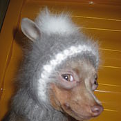 Для домашних животных, ручной работы. Ярмарка Мастеров - ручная работа шапочка для собачки. Handmade.