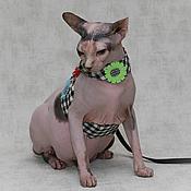 Для домашних животных, ручной работы. Ярмарка Мастеров - ручная работа Ромашки. Handmade.