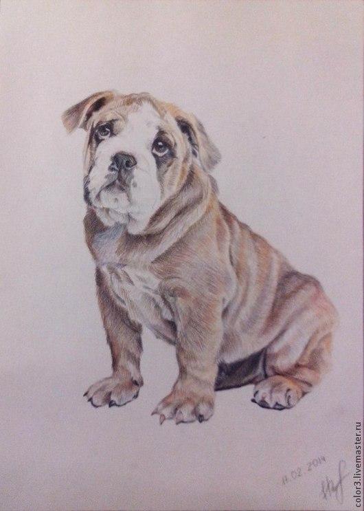 Животные ручной работы. Ярмарка Мастеров - ручная работа. Купить Собака, картина, цветные карандаши. Handmade. Собака, цветные карандаши