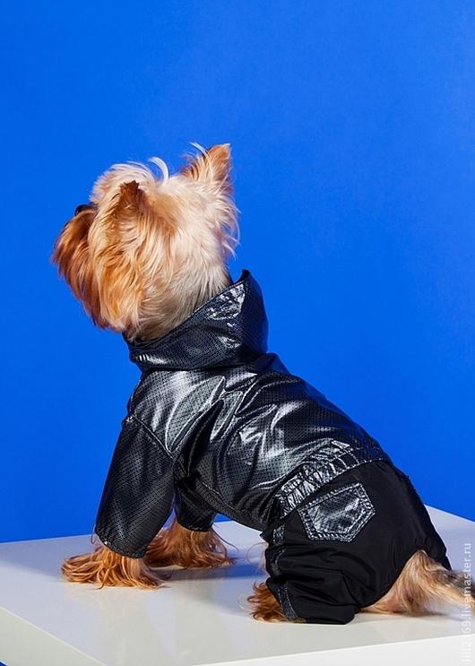 """Одежда для собак, ручной работы. Ярмарка Мастеров - ручная работа. Купить Комбинезон-дождевик """"Черная Молния"""". Handmade. Серебряный"""