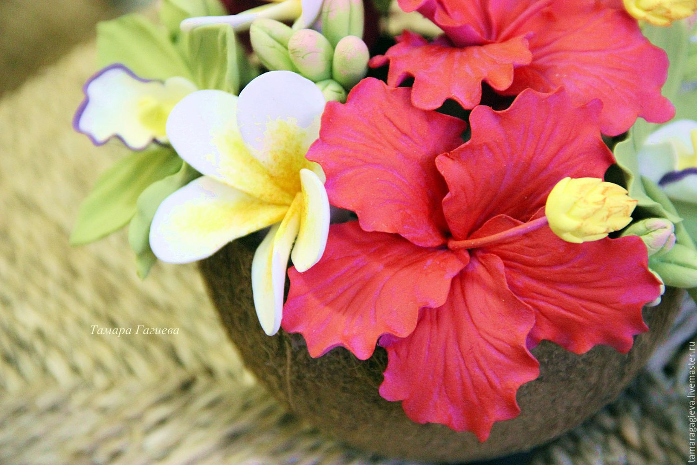 Цветы тропические фото