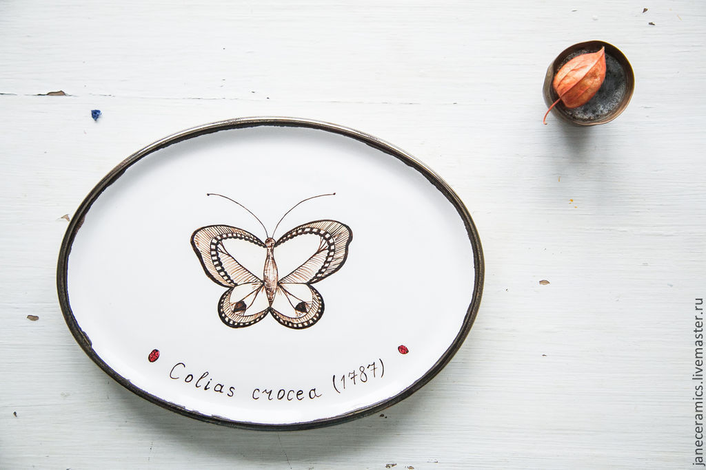 Collection of butterflies. Serving dish, pottery, Plates, Zhukovsky,  Фото №1