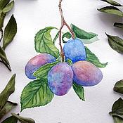 Картины и панно handmade. Livemaster - original item Pictures: Plums Botanical watercolor. Handmade.