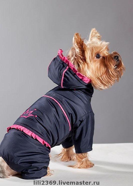 Одежда для собак, ручной работы. Ярмарка Мастеров - ручная работа. Купить Комбинезон для собак Корона. Handmade. Одежда, собака, чихуахуа