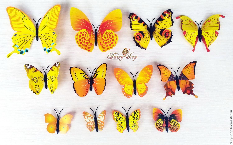 Butterflies \