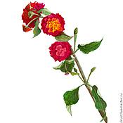 Картины и панно ручной работы. Ярмарка Мастеров - ручная работа Картина акварелью Турецкий Цветочек, малиновый  красный  зеленый. Handmade.
