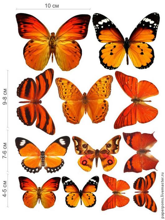 Свадебные аксессуары ручной работы. Ярмарка Мастеров - ручная работа. Купить Бабочки. Handmade. Бабочки, украшение для интерьера
