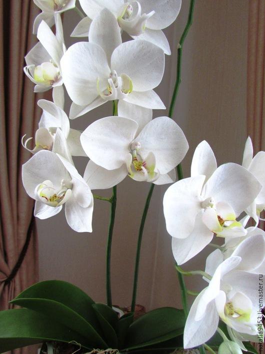 Цветы ручной работы. Ярмарка Мастеров - ручная работа. Купить Орхидея фаленопсис. Handmade. Белый, орхидея, ручная работа