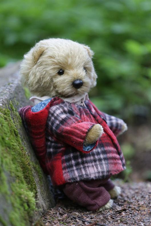 Мишки Тедди ручной работы. Ярмарка Мастеров - ручная работа. Купить Медвежка Буба. Handmade. Бежевый, подарок, немецкий мохер