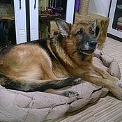 Для домашних животных, ручной работы. Ярмарка Мастеров - ручная работа Лежанка для большой собаки. Handmade.