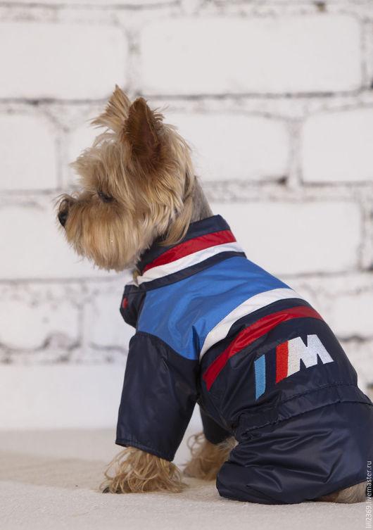 Одежда для собак, ручной работы. Ярмарка Мастеров - ручная работа. Купить Одежда для собак Комбинезон Гонщик. Handmade. Одежда для собак