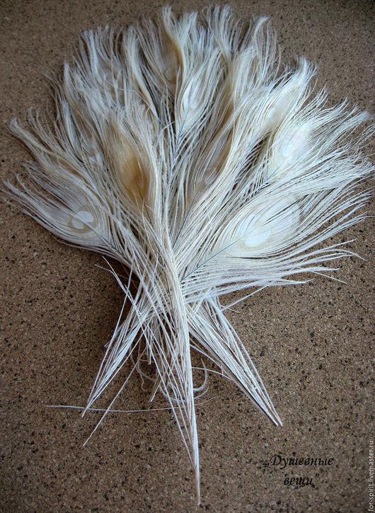 Другие виды рукоделия ручной работы. Ярмарка Мастеров - ручная работа. Купить Перья белого павлина (некрашеные). Handmade. Белый