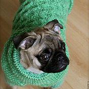 """Для домашних животных, ручной работы. Ярмарка Мастеров - ручная работа Свитер """"Уютный мопс"""". Одежда для собак.. Handmade."""