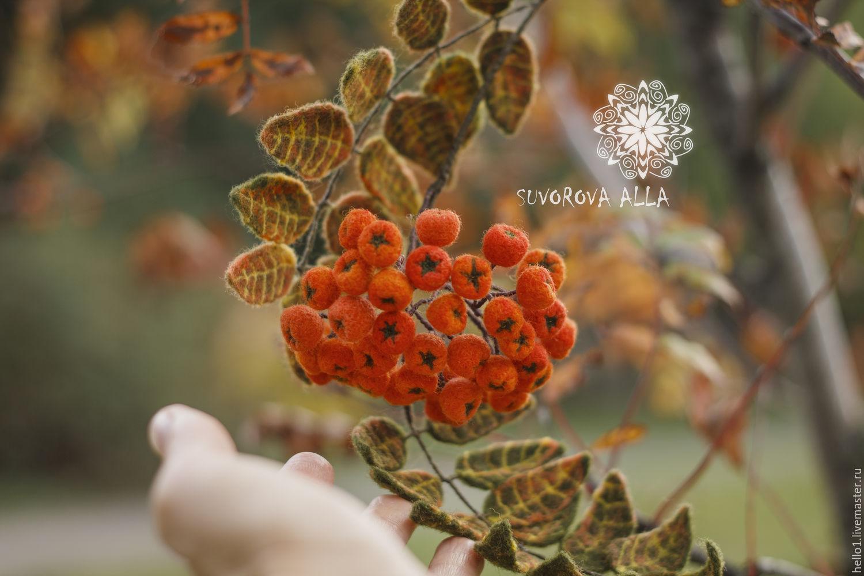 Цветы рябины купить подарок на 8 марта из резинок видео