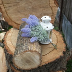 Спилы деревьев (spilderevo40ru) - Ярмарка Мастеров - ручная работа, handmade
