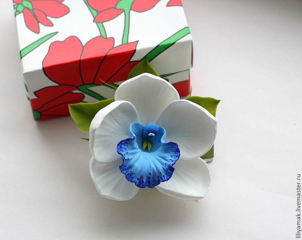Орхидея девушке в подарок 1