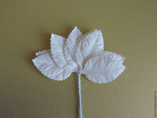 Открытки и скрапбукинг ручной работы. Ярмарка Мастеров - ручная работа. Купить Листья со стеблем белые 10 шт. Handmade.