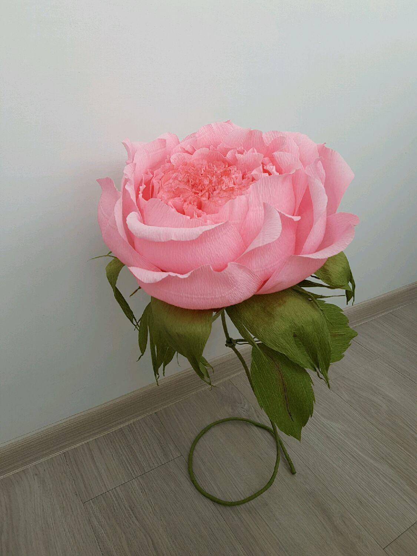 розы из гофрированной бумаги фото