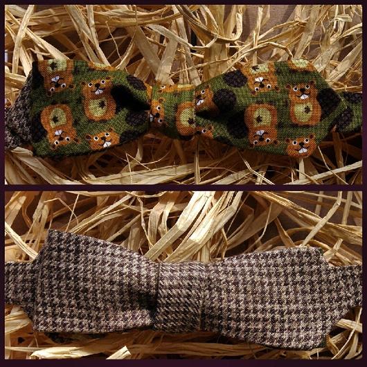 Галстуки, бабочки ручной работы. Ярмарка Мастеров - ручная работа. Купить Двусторонний галстук-бабочка Бобер. Самовяз.. Handmade. в школу