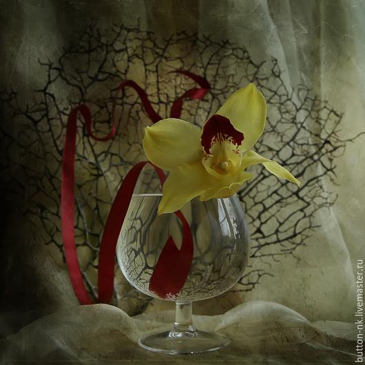 Фотокартины ручной работы. Ярмарка Мастеров - ручная работа. Купить Натюрморт Орхидея в бокале. Handmade. Лимонный, вишневый, бордовый, паутина